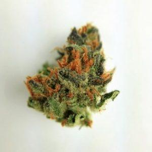 Buy Blackwidow Kush Weed Online